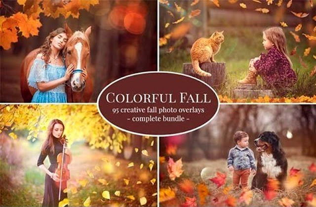 Colorful Fall Photo Overlays
