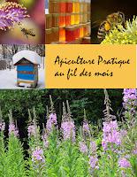Couverture du livre Apiculture pratique au fil des mois