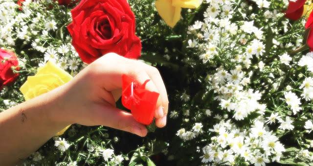 Foto do Miguel colocando uma flor no túmulo do meu pai.