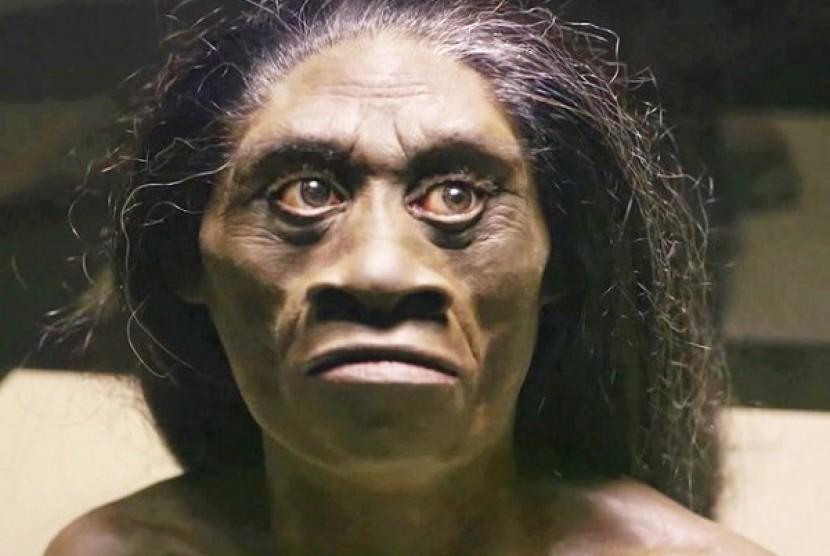 Jenis Manusia Purba Yang Ada Di Indonesia Idsejarah Net
