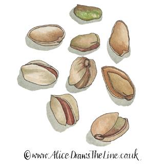www.AliceDrawsTheLine.co.uk :: Pistachios