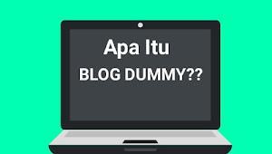 Apa Itu Blog Dummy ? Inilah Penjelasan Blog Dummy
