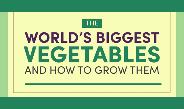 The World's Biggest Vegetables and How to Grow Them