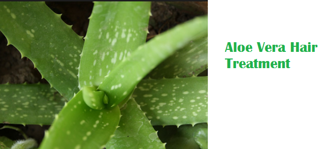 Aloe Vera Hair Treatment