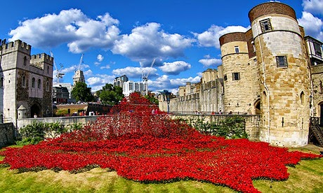 Tower of London Cascade of Poppies