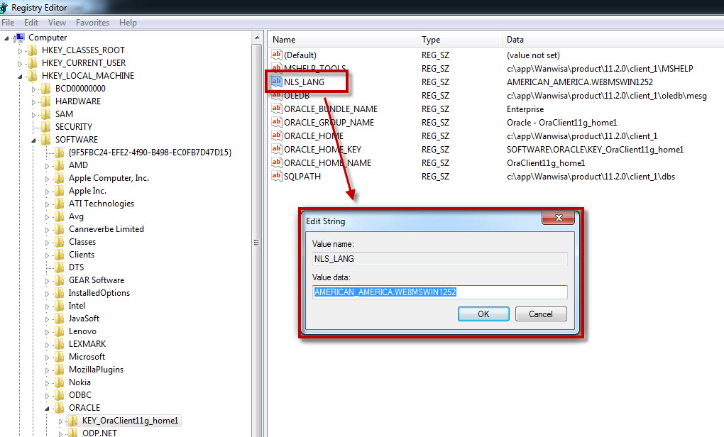 Oracle: How to get Oracle 11g database to support your language