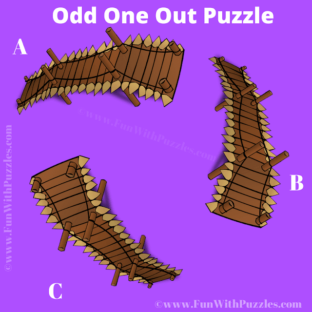 It is the picture puzzle in which one has to find the bridge which is different