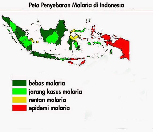 Malaria di Indonesia - Terapi Sehat : Info Kesehatan Medis dan Alternatif