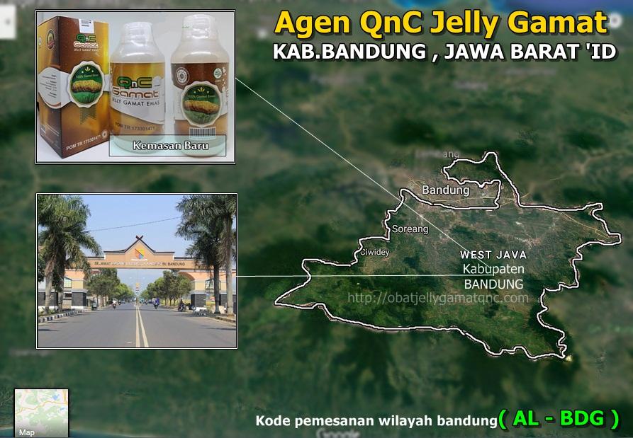 Agen QnC Jelly Gamat Di Kabupaten Bandung , Jawa Barat