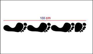 تحويل المتر الى فوت القدم كم متر يساوي تحويل القدم الى متر طولي كم قدم في المتر الواحد تحويل القياسات من قدم الى متر المتر كم قدم يساوي 1000 قدم كم متر تحويل المتر المربع الى متر