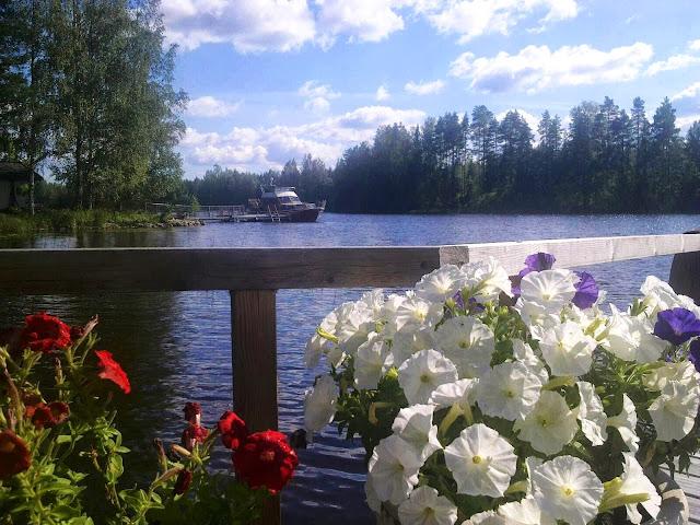 siskon laituri, Leppävirta, kesä, juhannus, kukat