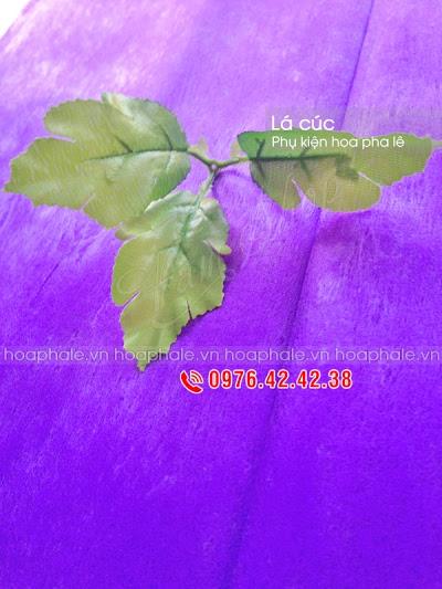Phu kien hoa pha le o Pho Hue