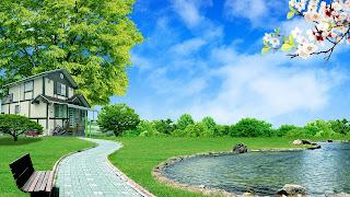 Beautiful Home And Nature Photos