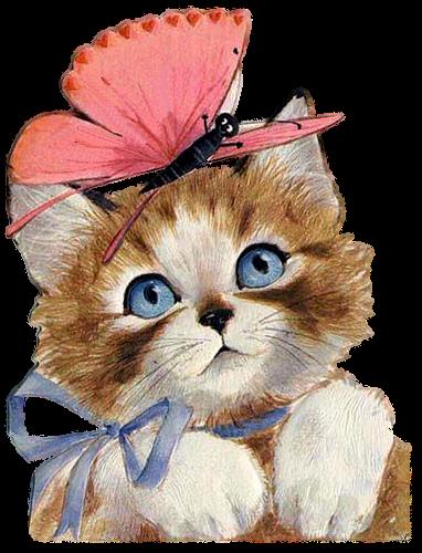 http://2.bp.blogspot.com/-VRh5Vn7YOPw/T2PUCVaYxcI/AAAAAAAAFd8/chYbR6FP5iQ/s1600/kitten+and+butterfly.png