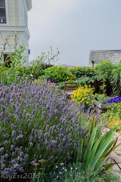Gardens In The Village