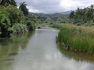 Kuba, Baracoa, Rio Macaguanigua, wasserreicher Fluss, üppige Vegetation.