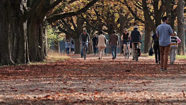 walking, best exercise, easiest,