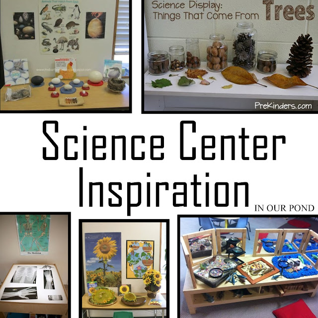 Science Center Inspiration from In Our Pond