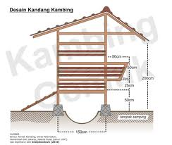 BPP Gondang Tulungagung Jawa Timur: KANDANG UNTUK TERNAK ...