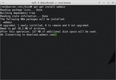 Install webmin