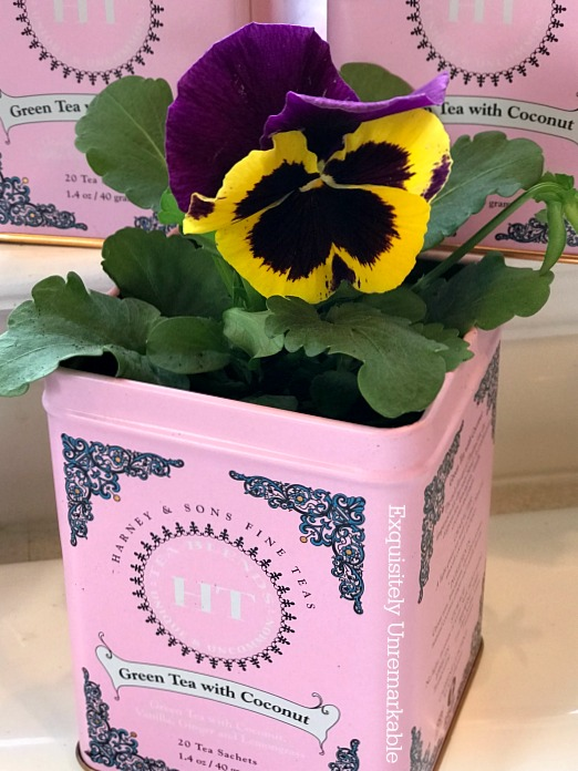 Tea Tin Planters with pansies inside
