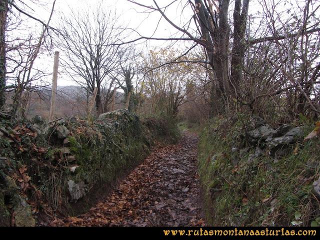 Ruta de las Xanas y Senda de Valdolayés: Sendero a Peña Rey