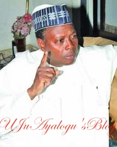 North must complete Buhari's 2 terms if he resigns or else… – Junaid Mohammed