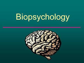 biopsychology-www.healthnote25.com
