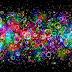 Gekleurde achtergrond met bubbels
