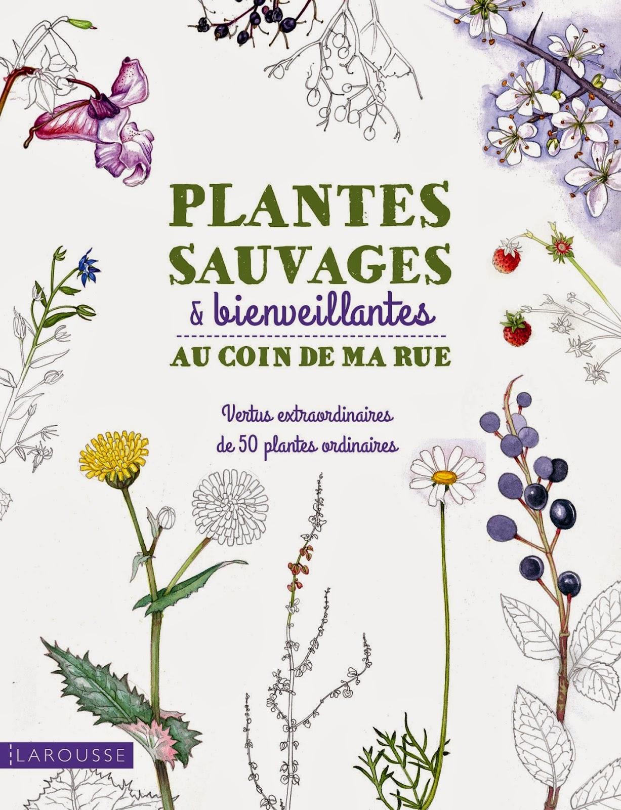 http://www.amazon.fr/Plantes-sauvages-bienveillantes-coin-rue/dp/2035898439/ref=sr_1_4?s=books&ie=UTF8&qid=1422626697&sr=1-4&