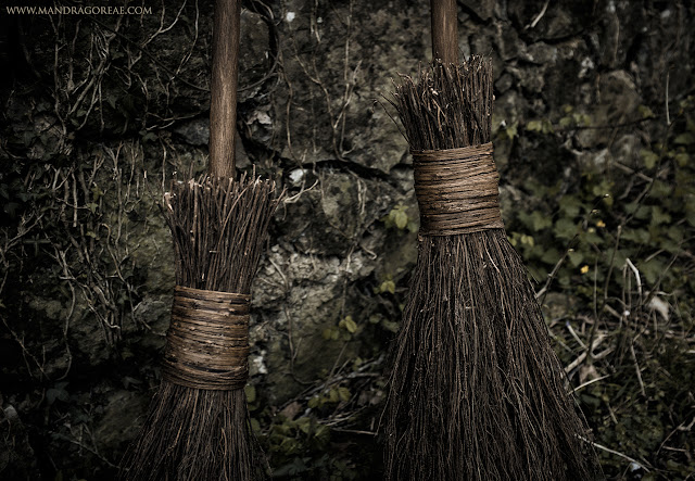 Aker Dantzaria Besom Brooms, Witch Broomsticks by Victoria Francés, Mandragoreae