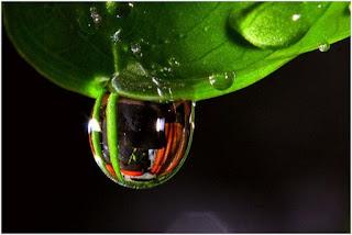 Kimia Air dan Pencemarannya