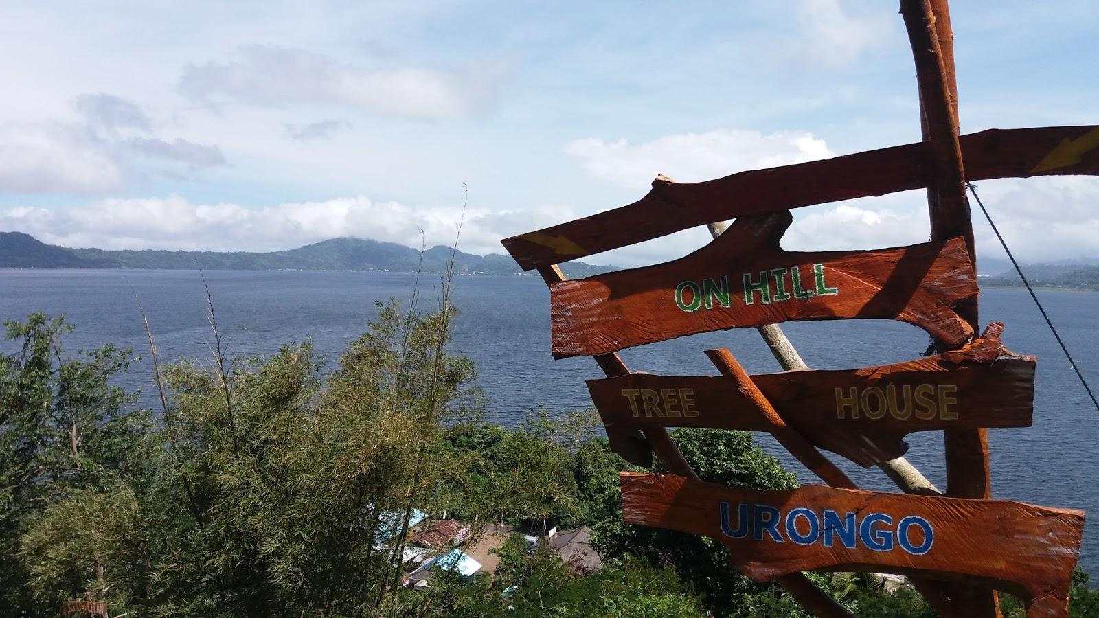Blog Wisata Sulawesi Utara, Indonesia: TREE HOUSE PUNCAK URONGO