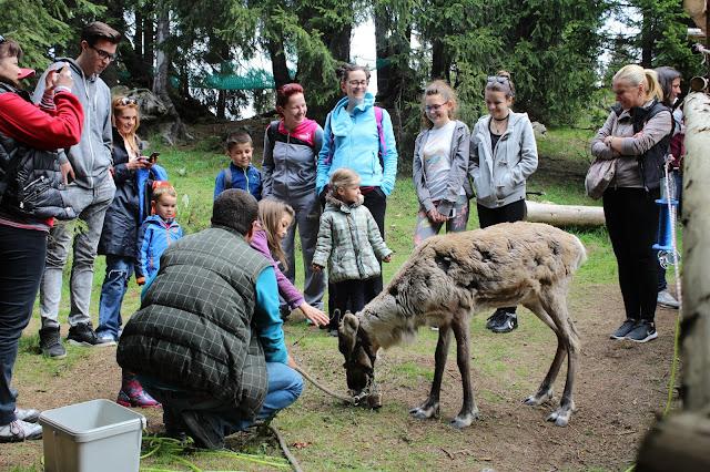 РИОСВ – Смолян организира инициативи за Световния ден на околната среда