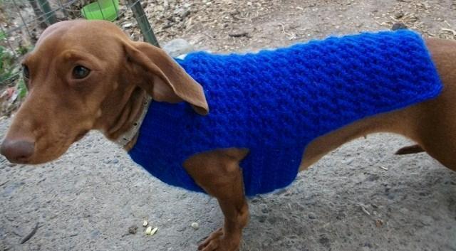 Copper Llama Studio Crochet Dog Sweater Pattern