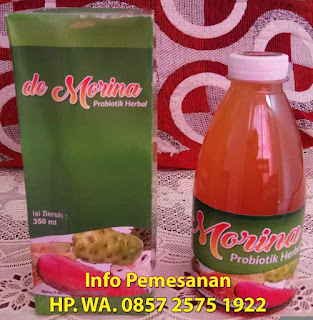 DeMorina Probiotik Herbal