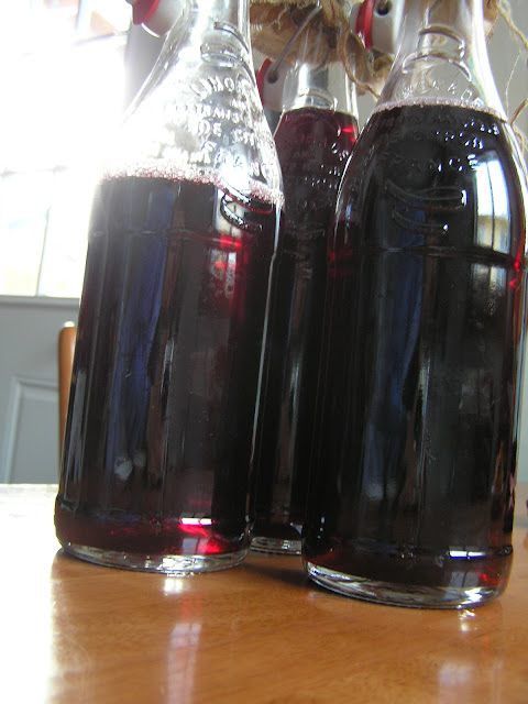lacto-fermented grape soda