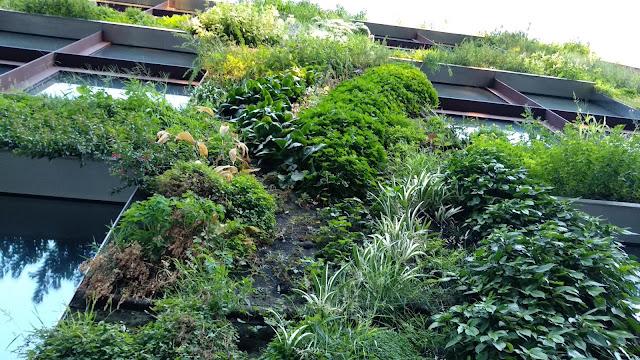 detalle jardin vertical