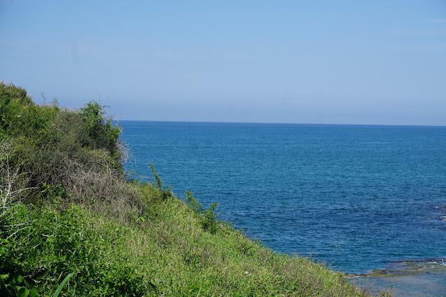 שמורת טבע חוף דור