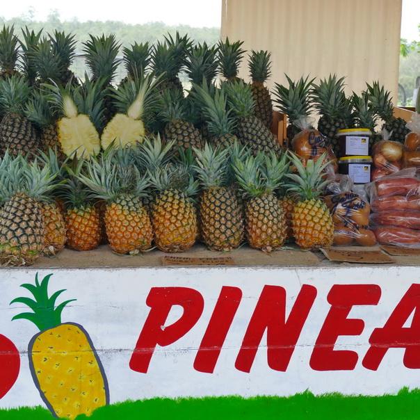 Früchte Verkauf Ananas Stand Pineapple