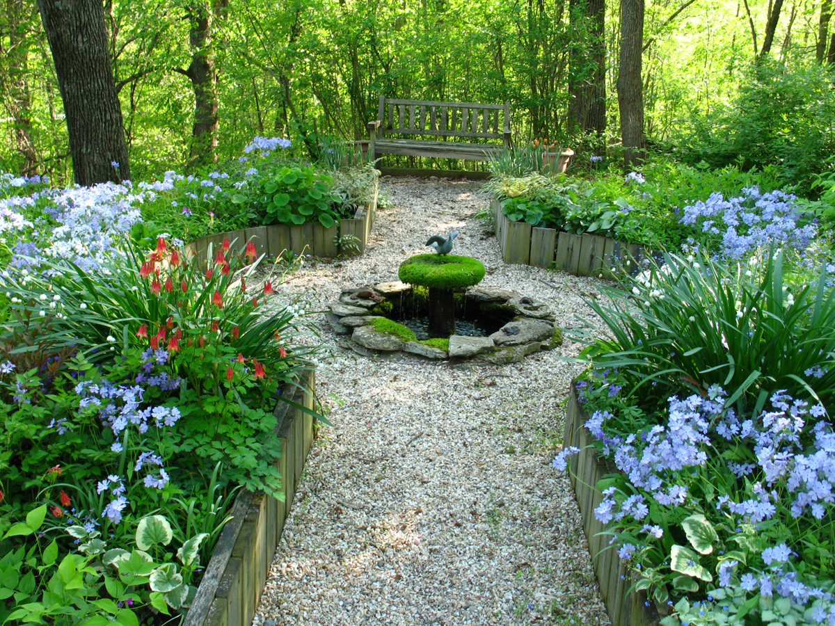 Tiny House Interior Elegant Garden Subtropical Gardening