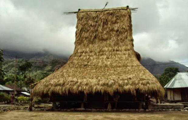 Nusa Tenggara Timur yaitu sebuah provinsi kepulauan yang terletak di tenggara Indonesia Rumah Adat Nusa Tenggara Timur (Musalaki), Gambar, dan Penjelasannya
