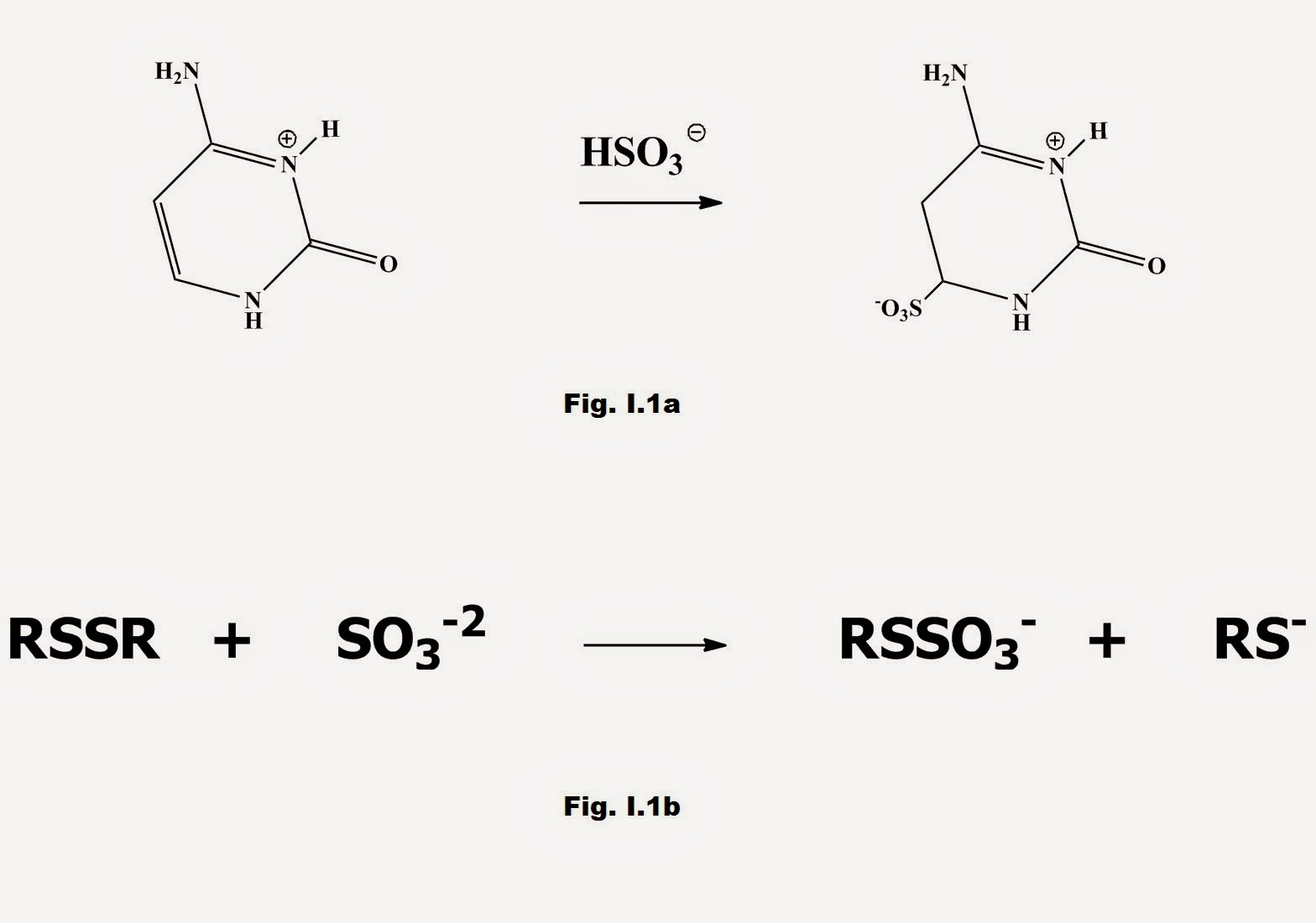 Fig. I.1 a) Pyrimidines in nucleic acids react with HSO3- to form addition compounds b) Aldehydes react with HSO3- to form addition compounds