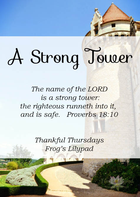 Castles were built with a Strong Tower, a last line of defense during invasion. God is the Strong Tower for His children. We can seek shelter in Him when needed. Thankful Thursdays. frogslilypad.net