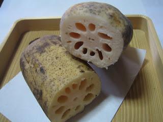 金沢の、加賀野菜の一つである「小坂れんこん」の写真です。