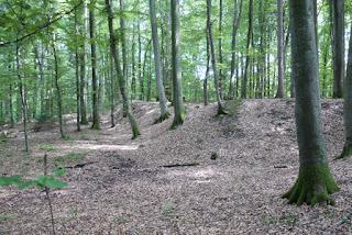Nordwestliche und nördliche Ecke der Keltenschanze Holzhausen 2