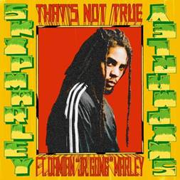 SKIP MARLEY FEAT. DAMIAN 'JR. GONG' MARLEY  THAT'S NOT TRUE  OFFICIAL VIDEO AVAILABLE NOW