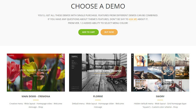Top Pic Wordpress Theme