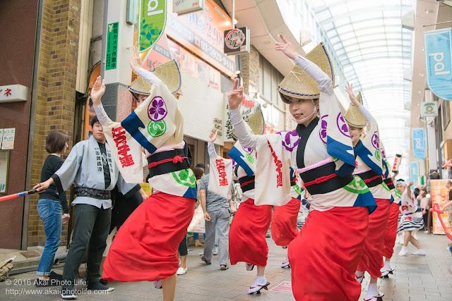 高円寺パル商店街、江戸っ子連の流し踊り、女踊りの写真 2