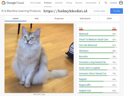 API Cloud Vision Google